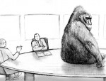 gorillaboardroom
